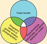 Climate refugia: joint inferences from fossils, genetics and models